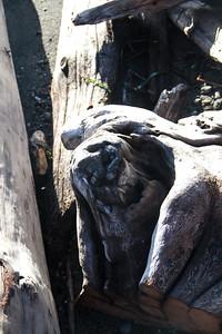 Driftwood Shores 27
