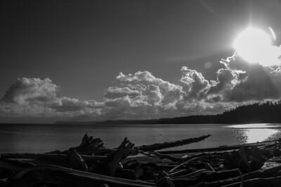 Driftwood Shores 21