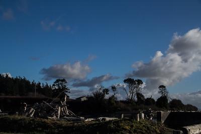 Driftwood Shores 14