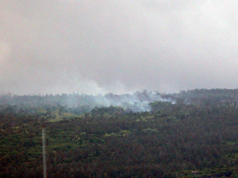 Lava relentlessly making its way down hill towards the ocean. Nothing in it's path is safe.