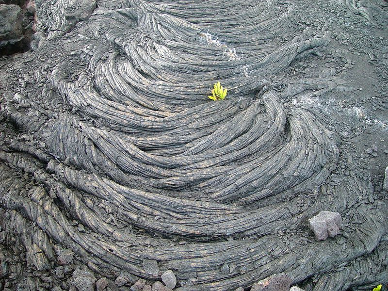 Pahoehoe lava is characterized by a smooth, billowy, or ropy surface. This flow is from the old buried Kalapana subdivision.