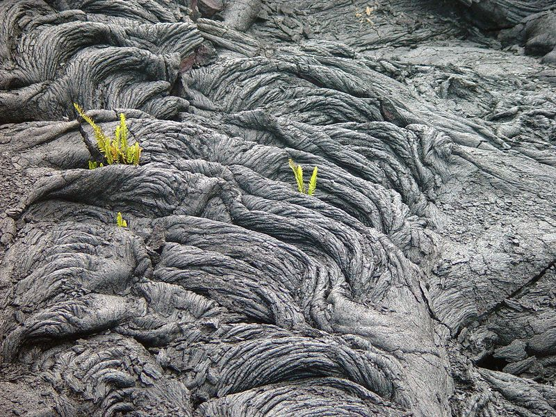 Pahoehoe lava is characterized by a smooth, billowy, or ropy surface.