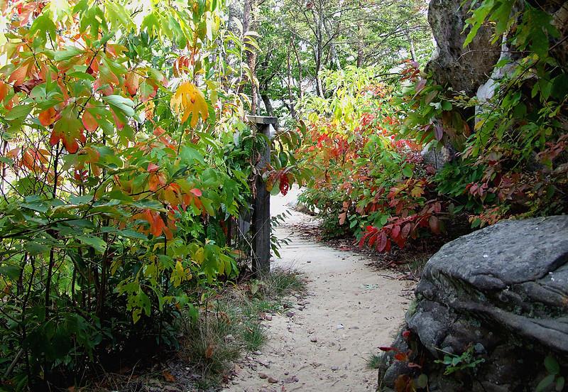 Pine Mountain Pass