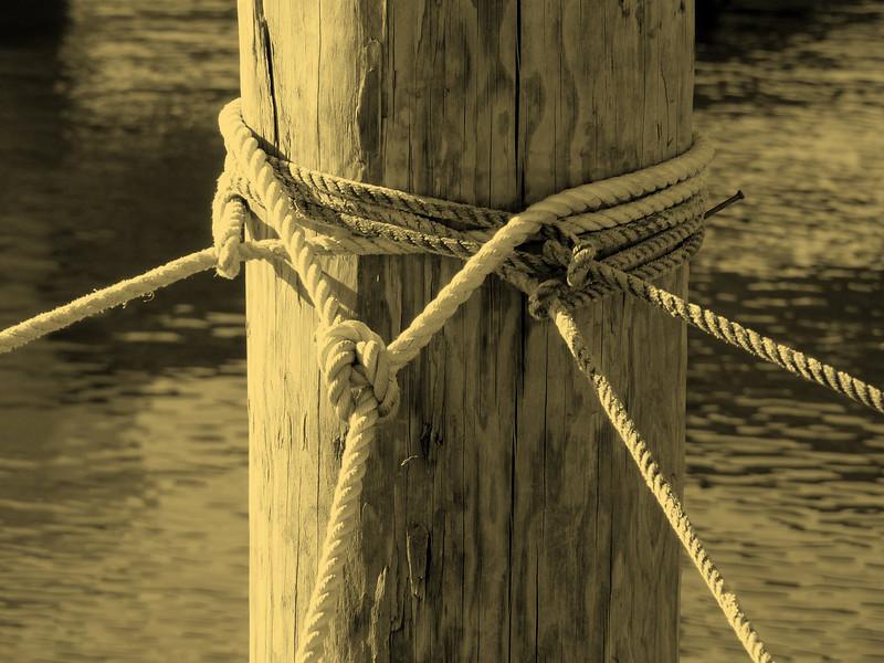 Knots (sepia)