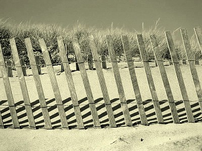 Beach Fences