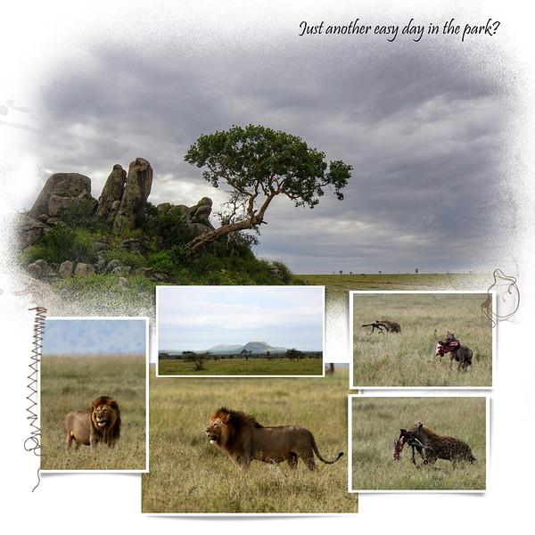 Day 06 Serengeti Mud 2