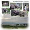 Day 08 Serengeti to Crater 10