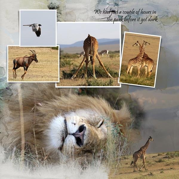 Day 02 Nakuru to Mara 2