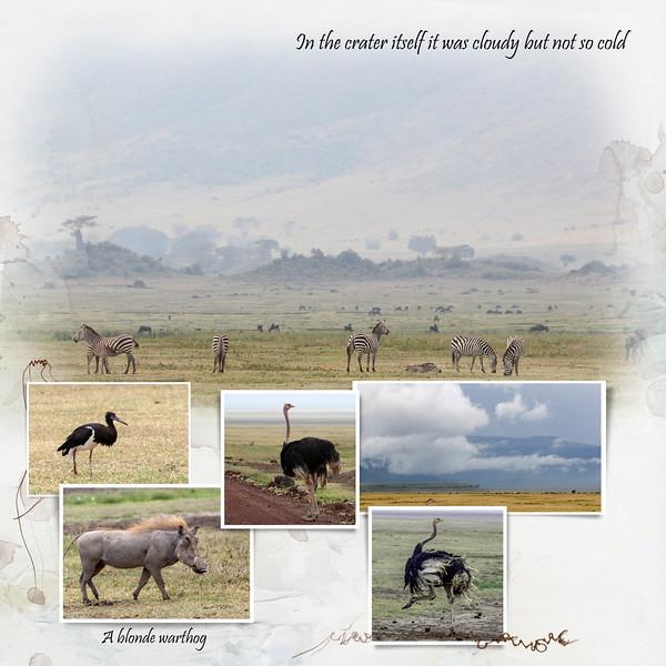 Day 08 Serengeti to Crater 2