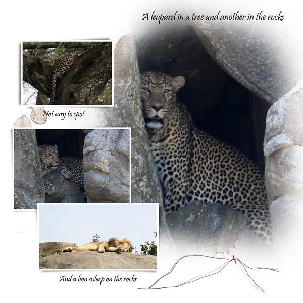 Day 06 Serengeti Mud 7