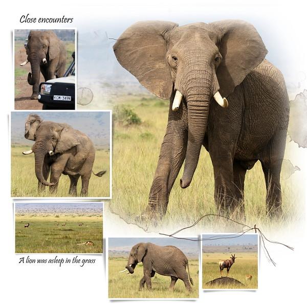 Day 05 Mara to Serengeti 5