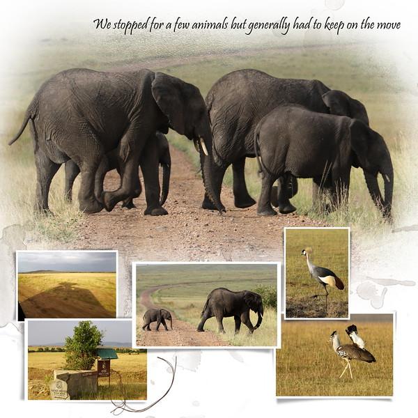 Day 05 Mara to Serengeti 2