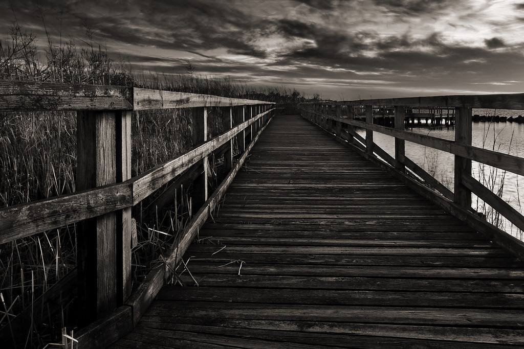 Boardwalk at Sunset (B&W version), Back Bay Nat'l Wildlife Refuge, VA