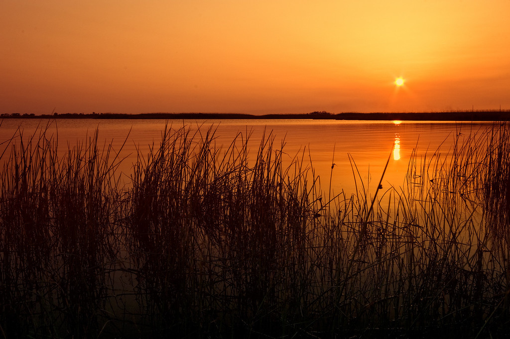 Sunset, Back Bay Nat'l Wildlife Refuge, VA