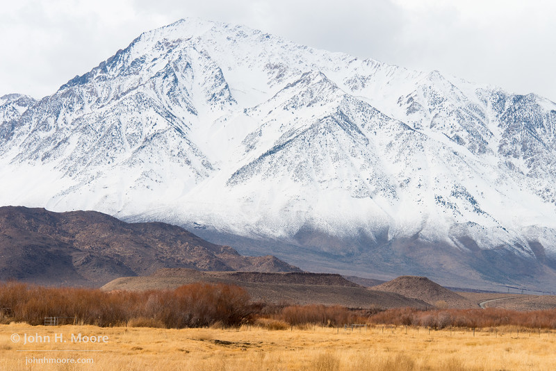 The snow-covered Eastern Sierra looms over a field outside of Bishop, California