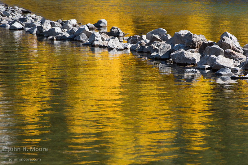 Reflections of yellow aspens in fall in the Eastern Sierra, California, USA