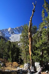eastern Sierras Oct2014  386