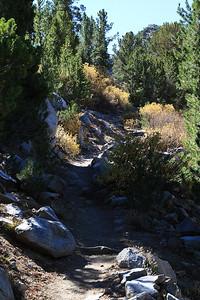 eastern Sierras Oct2014  391