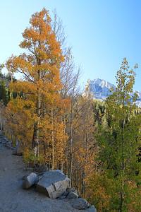 eastern Sierras Oct2014  355
