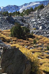 eastern Sierras Oct2014  399