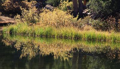 eastern Sierras Oct2014  366
