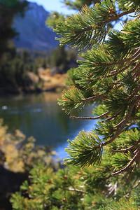 eastern Sierras Oct2014  372