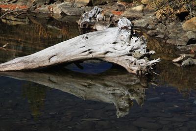 eastern Sierras Oct2014  381