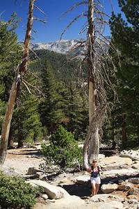 eastern Sierras Oct2014  047