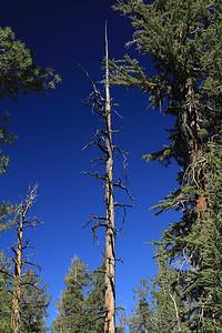 eastern Sierras Oct2014  030