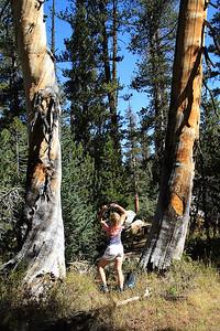 eastern Sierras Oct2014  035