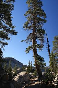 eastern Sierras Oct2014  010