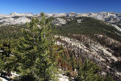 eastern Sierras Oct2014  053