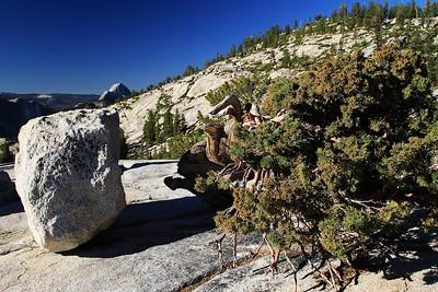 eastern Sierras Oct2014  007