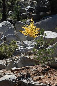 eastern Sierras Oct2014  022