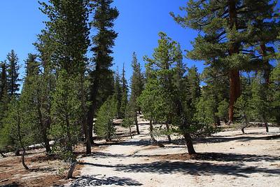 eastern Sierras Oct2014  040