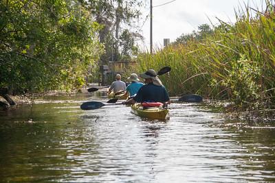2011 - Everglades