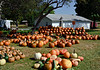 PA-CPS-2020.9.23#1786.3. Cookie's Pumpkin Stand  near Catawissa, Columbia County Pennsylvania.