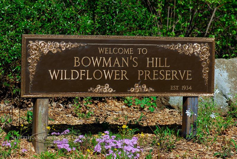 PA-2008.4.24#033.2. Bowman's Hill Preserve. Bucks County, Pennsylvania.