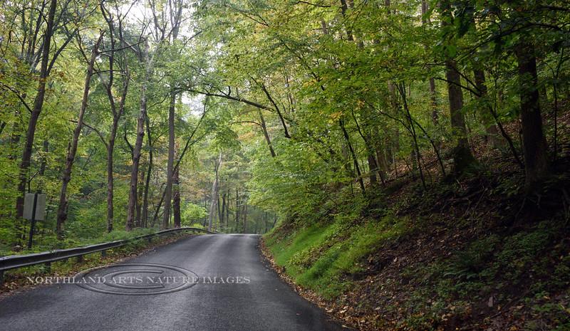 PA-2020.9.26#2449.2. Kintner Hill Rd., near Kintnersville, Bucks County Pennsylvania.