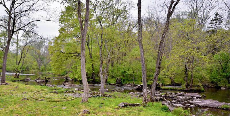 PA-2016.5.11#564-Levi Sheard Grist Mill. Nearby Tohikon Creek, the stream that powered the wheel that ran the Levi Sheard Mill. Tinicum Township Pennsylvania.