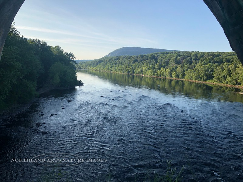 PA-DRV1-2019.7.14#066.1. View from the Delaware River Viaduct at Mount Bethel Pennsylvania. Photo by Karisa Smith.