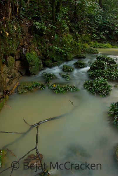 Flowing to the TIputini.<br /> Interior forest streams flow towards the TIputini River after a hard rain in the rain forests of the Ecuadorian Amazon.