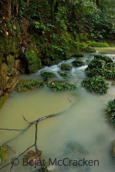 Interior forest streams flow towards the TIputini River after a hard rain in the rain forests of the Ecuadorian Amazon.