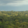 Stiched together from four photographs taken overlooking the Ecuadorian Amazon's Yasuni National Park.