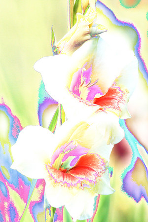 effectful flower