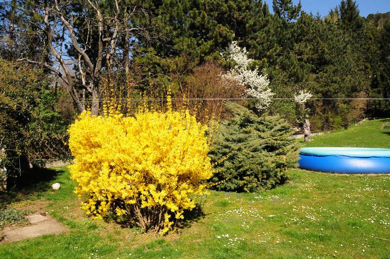Der Frühling ist da !