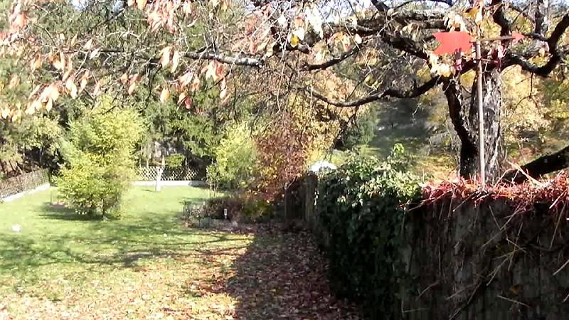 Oktoberfarbenwind