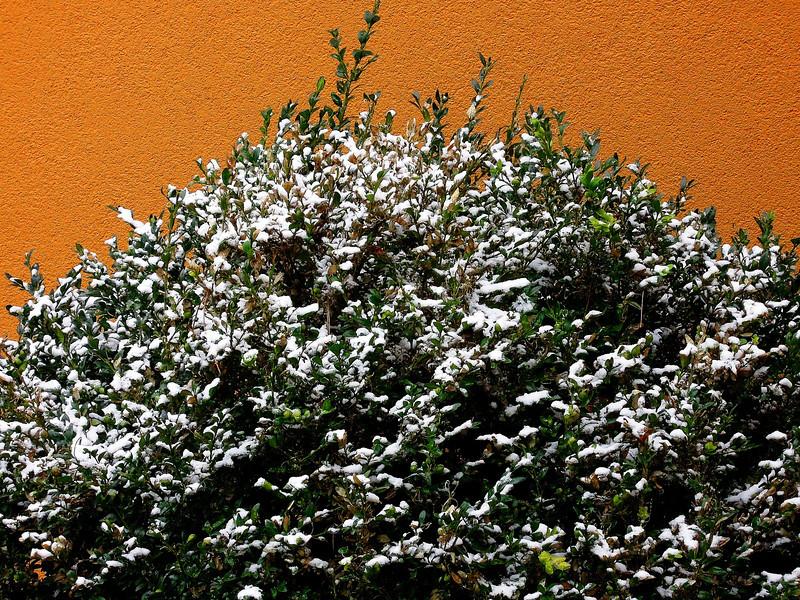 Erster Schnee am 28. Oktober