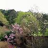 Endlich Frühling, Ende April