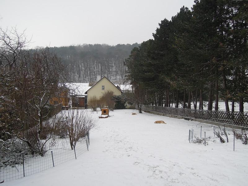 Garten2016